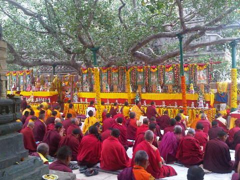 Bodhi tree prayers